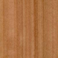 Species Spotlight – Red Grandis