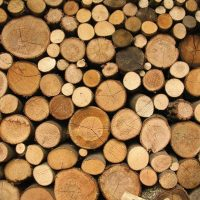 Falling Lumber Prices – Reading Between The Headlines